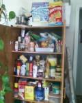 Help Me Organize My House
