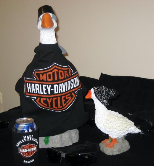 Harley Davidson Geese
