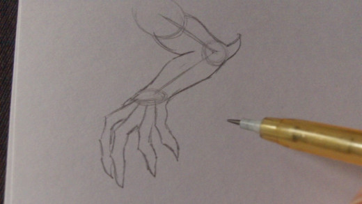 Drawing the outline of the fingers/claws.