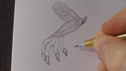 Draw the claws at the tips of the fingers.