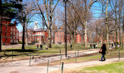 Stroll the famed Harvard campus