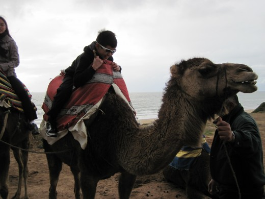 Boy getting up on a camel in Morocco.