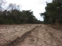 Open terrain, Oirschotse Heide