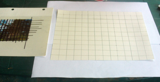 Make a graph on your drawing paper and over the reference photograph.