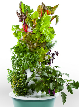 This tower garden produces a ridiculous amount of produce in a very small space.