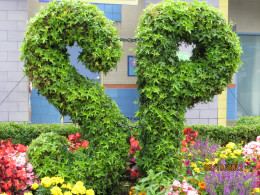 The very first topiary you see at Sesame Place