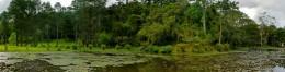 Alberto Lofgren State Park