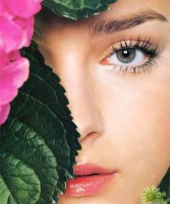 Foods that Improve Eyesight