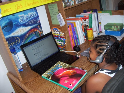 Virtual courses are taken daily. At the 3rd grade level students are technologically advanced.
