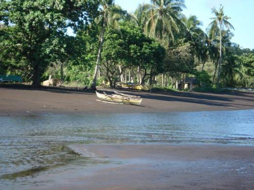 Very serene yet productive shore