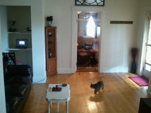 Our actual living room.  And our cat, PJ :) To the right you will see the main door, which was left open.