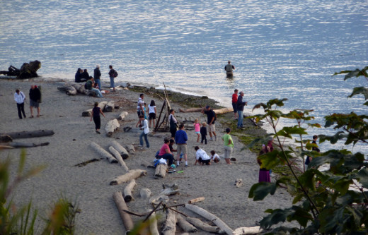 Families enjoying Carkeek Park in Seattle, Washington.