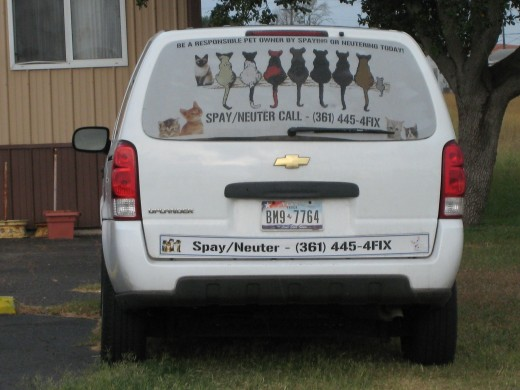 The Cattery's MASH unit that offer low cost spay and neuter services for stray animals. :)