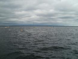 Lake Monroe, Sanford FL