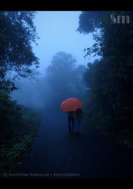 Together from Santhosh Mankulam Source: flickr.com