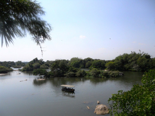 Ranganathittu Bird sanctuary