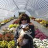 Pink Rose 22 profile image