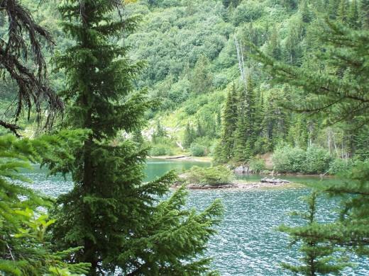 View along Snow Lake Trail