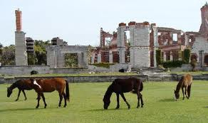 Wild horses graze in front of Cumberland ruins and former mansions.