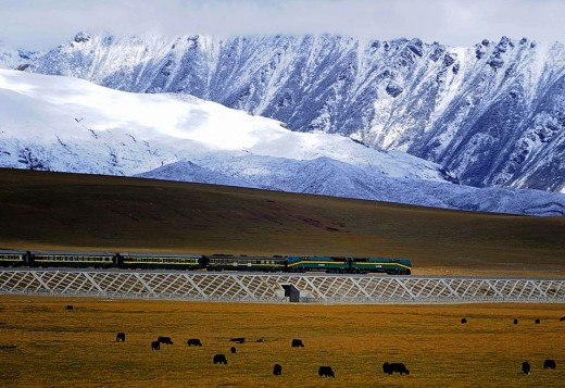 A shot of the Qingzang-Tibet train, one of many economic developments in Tibet.