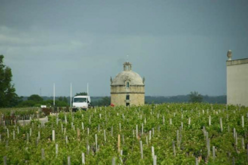 Chateau Latour with Tower