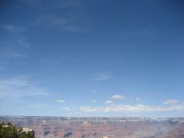 Classic canyon overlook.
