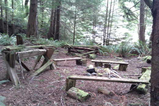A beautiful old camping spot close to the end of the trail, surrounded by towering trees.
