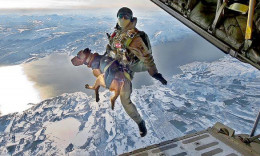 "The special forces of 14 countries conducted the big joint military exercise ""Cold response"" in minus 30 degrees in Narvik, Norway. The picture shows an Austrian special forces trooper training parachuting with dogs. Land, air and sea special forces"