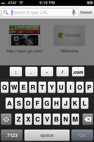"Tap the URL box at the top of the screen to enter a URL you want to access, then tap ""Go."""