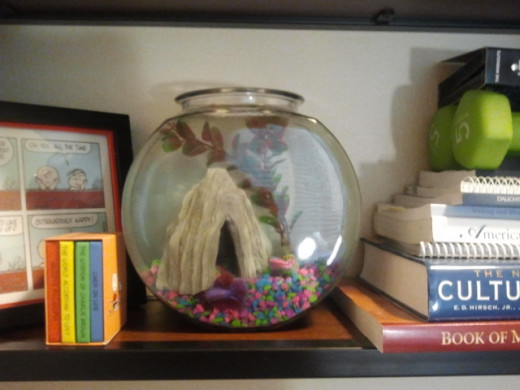 Fishbowl on shelf. Photo Source: Shanna11