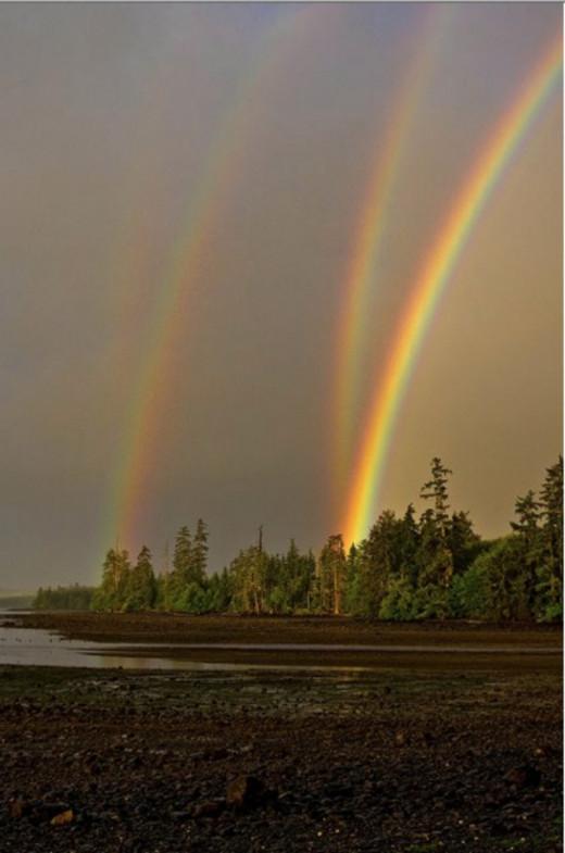 a quaternary rainbow