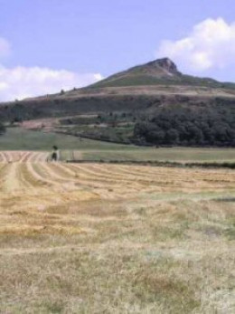 Roseberry Topping seen from fields at the back of Newton village