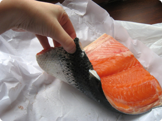 Fresh salmon fillet with skin