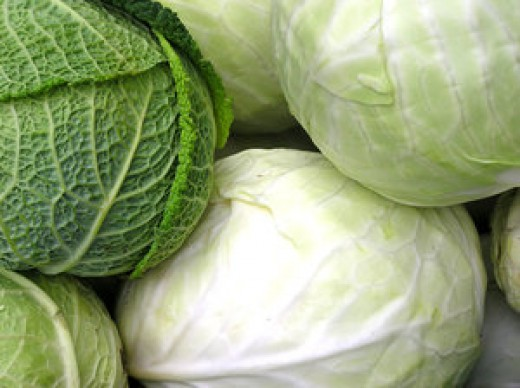 Start with cabbage.