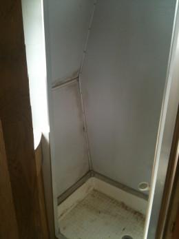 Original bathroom..yuck.