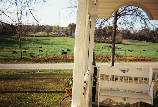 A view of Paradise on Faith's front Porch