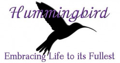 Hummingbird: Embracing Life to its Fullest