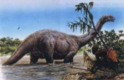 Mokele-Mbembe: Dinosaurs in Congo?