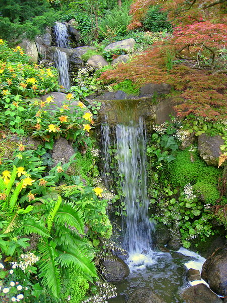 Hakone Gardens in Saratoga California