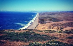 Things To Do On Your San Francisco Vacation: The Point Reyes National Seashore
