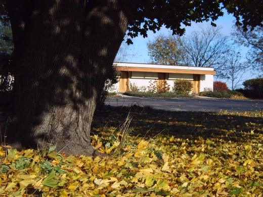 Fall at the Usonian Inn, the latest home!