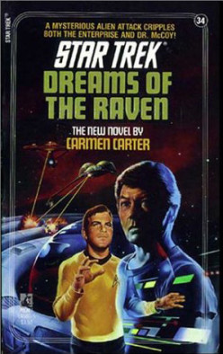Star Trek Books: Dreams of the Raven - A Review