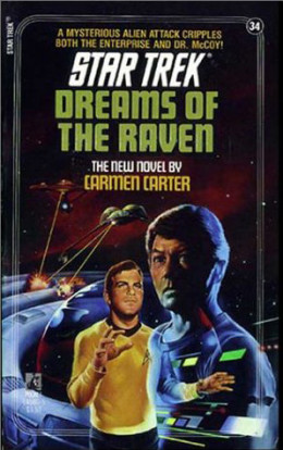 Dreams of the Raven cover.
