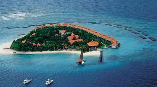 Magical Maldives - a Lotus Eater's vacation!