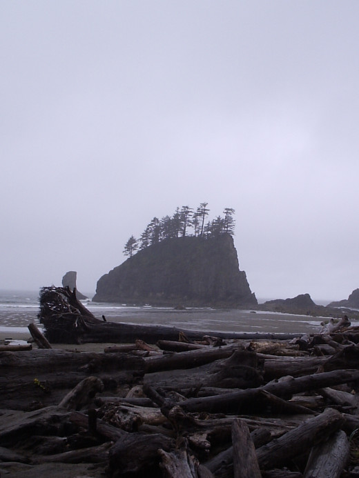 Beautiful geographic formations off the Olympic coast