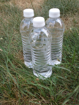 Stay hydrated to combat heat stress
