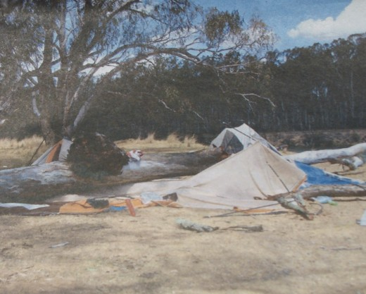 Tree fell near Cobram without warning.  Luckily the person inside was unharmed.  So be warned it can be risky camping under large overhanging trees.  You may not be so lucky