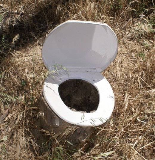 I couldn't resist adding this - we found it while camping in the bush.  They had dug a hole, put a hollow log on top with the toilet seat on top.  How's that for Ingenuity