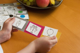 PECS i.e. Picture Exchange Communication System for children with Autism
