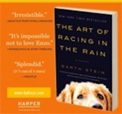 Enzo the Dog in The Art of Racing in the Rain by Garth Stein